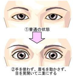 眉を動かさずに二重にする方法