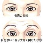 顔:普通の目から見開く